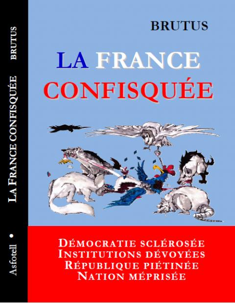 Couverture La France Confisquée